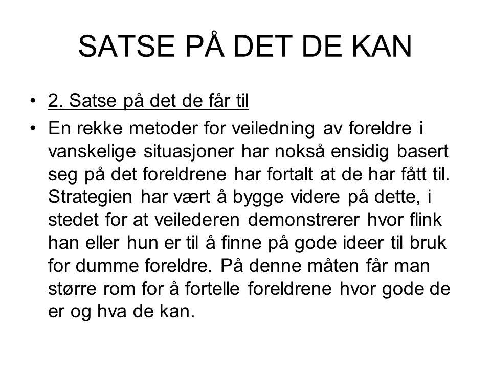 SATSE PÅ DET DE KAN 2.