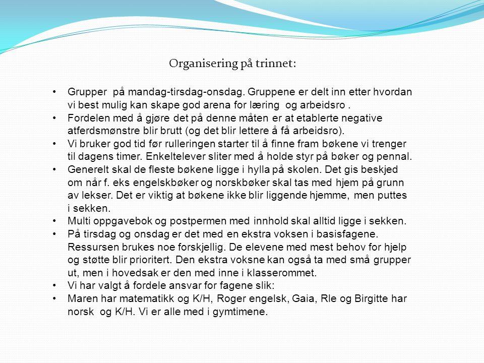 Norsk : Fokus på lesetrening og forståelse.