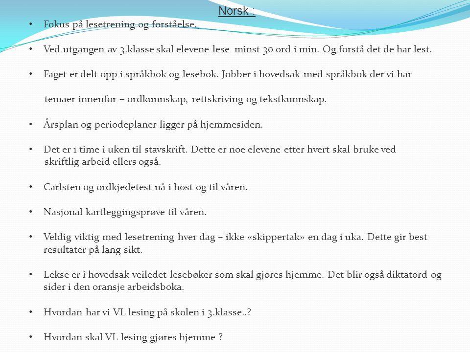 Norsk : Fokus på lesetrening og forståelse. Ved utgangen av 3.klasse skal elevene lese minst 30 ord i min. Og forstå det de har lest. Faget er delt op