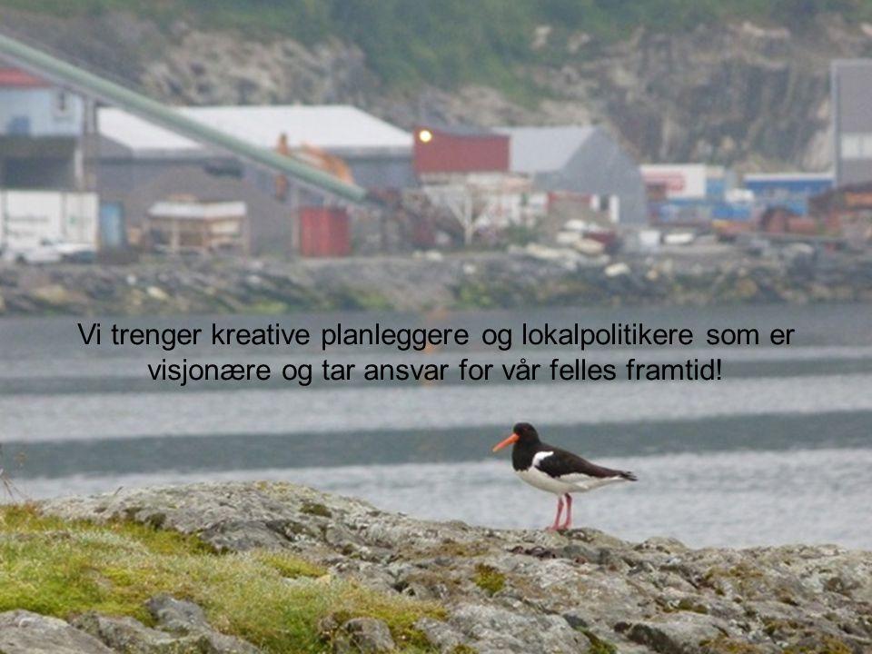 23 Vi trenger kreative planleggere og lokalpolitikere som er visjonære og tar ansvar for vår felles framtid!