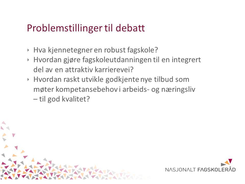 Problemstillinger til debatt ‣ Hva kjennetegner en robust fagskole.
