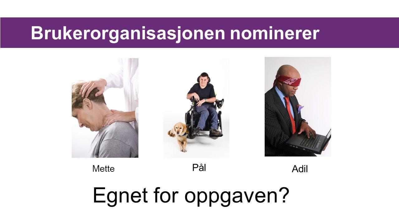Brukerorganisasjonen nominerer Mette Pål Adil Egnet for oppgaven?