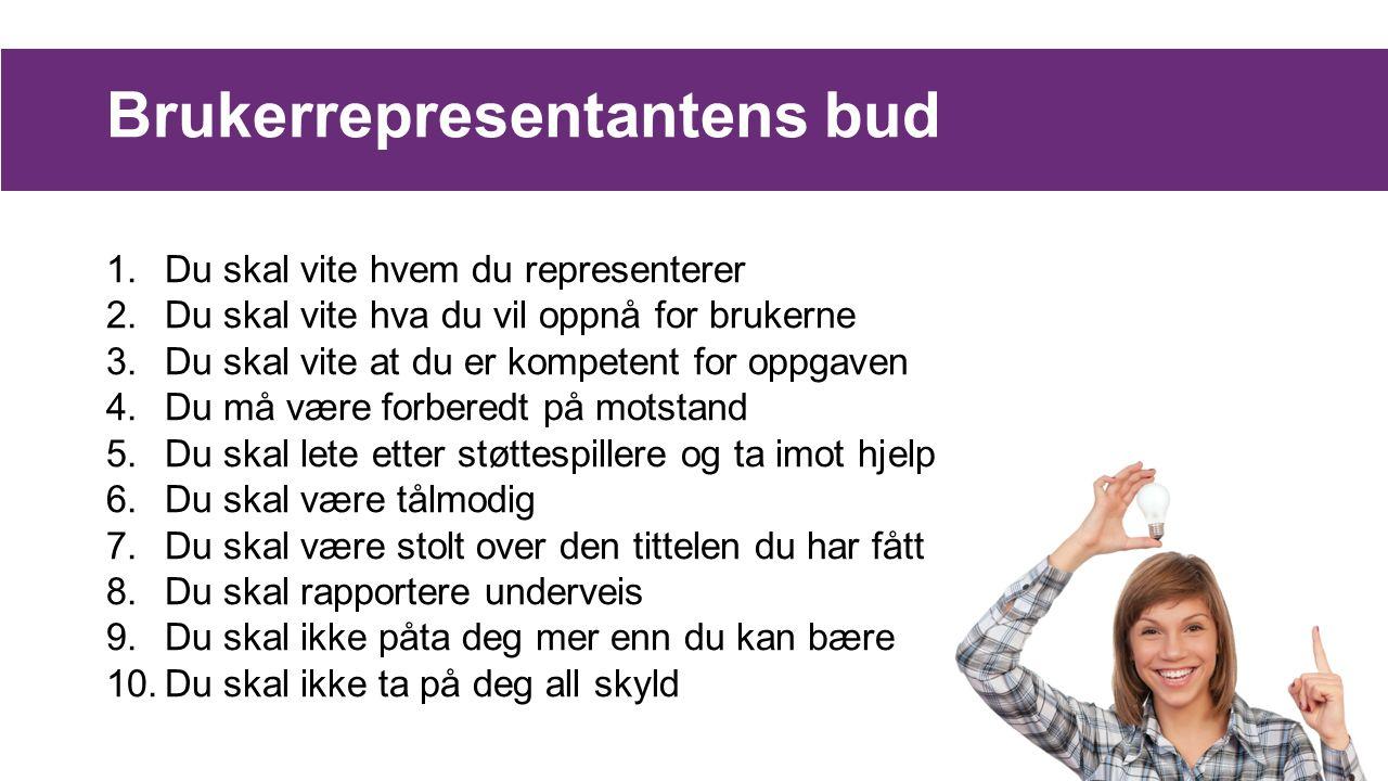 Brukerrepresentantens bud 1.Du skal vite hvem du representerer 2.Du skal vite hva du vil oppnå for brukerne 3.Du skal vite at du er kompetent for oppg