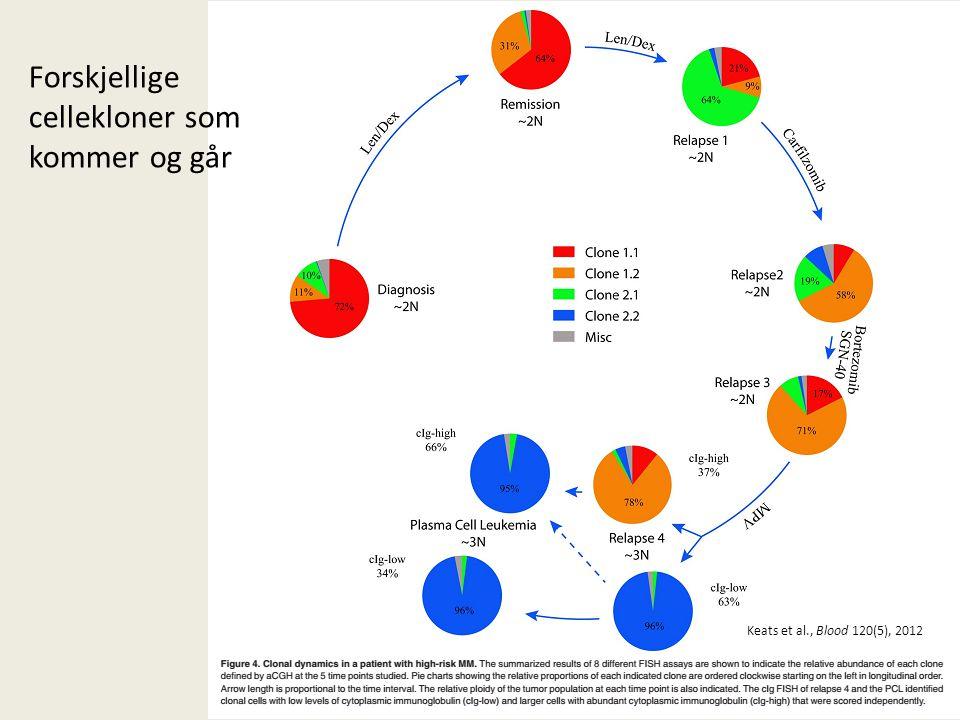 Forskjellige cellekloner som kommer og går Keats et al., Blood 120(5), 2012