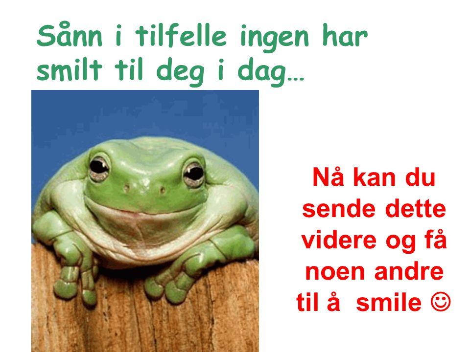 Nå kan du sende dette videre og få noen andre til å smile Sånn i tilfelle ingen har smilt til deg i dag…