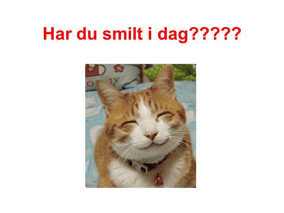 Har du smilt i dag?????