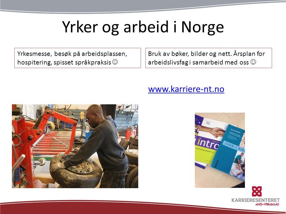 Yrker og arbeid i Norge Yrkesmesse, besøk på arbeidsplassen, hospitering, spisset språkpraksis Bruk av bøker, bilder og nett.