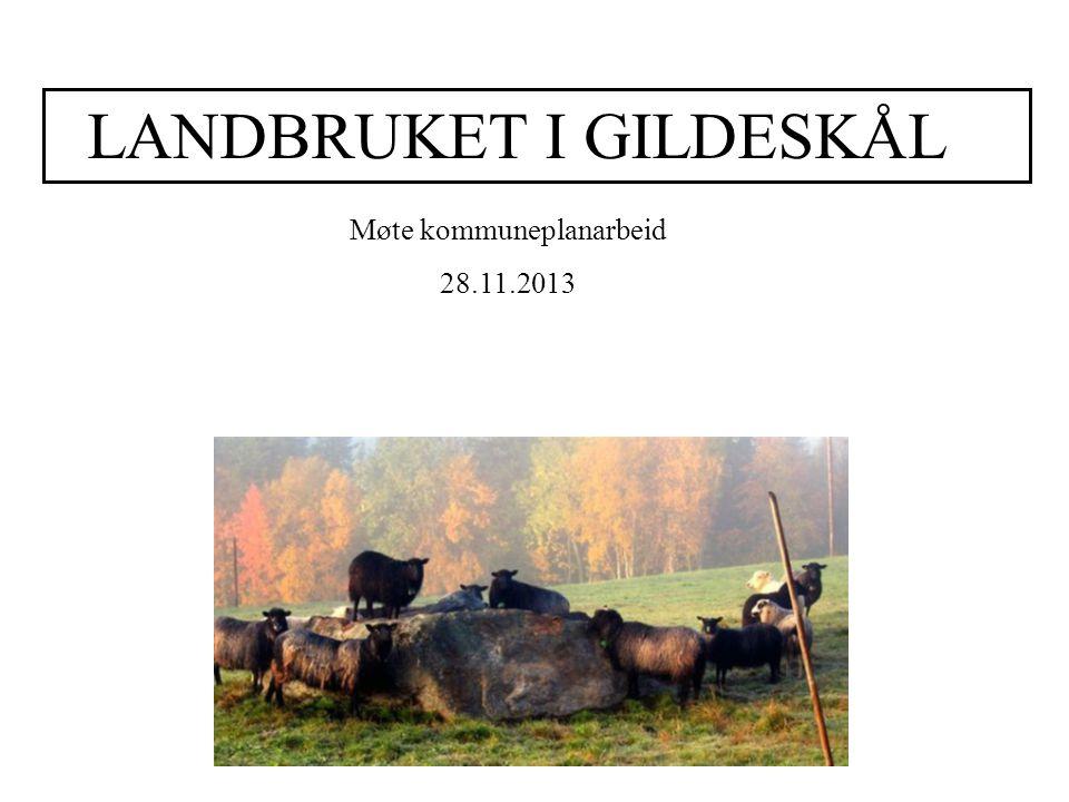 LANDBRUKET I GILDESKÅL Møte kommuneplanarbeid 28.11.2013