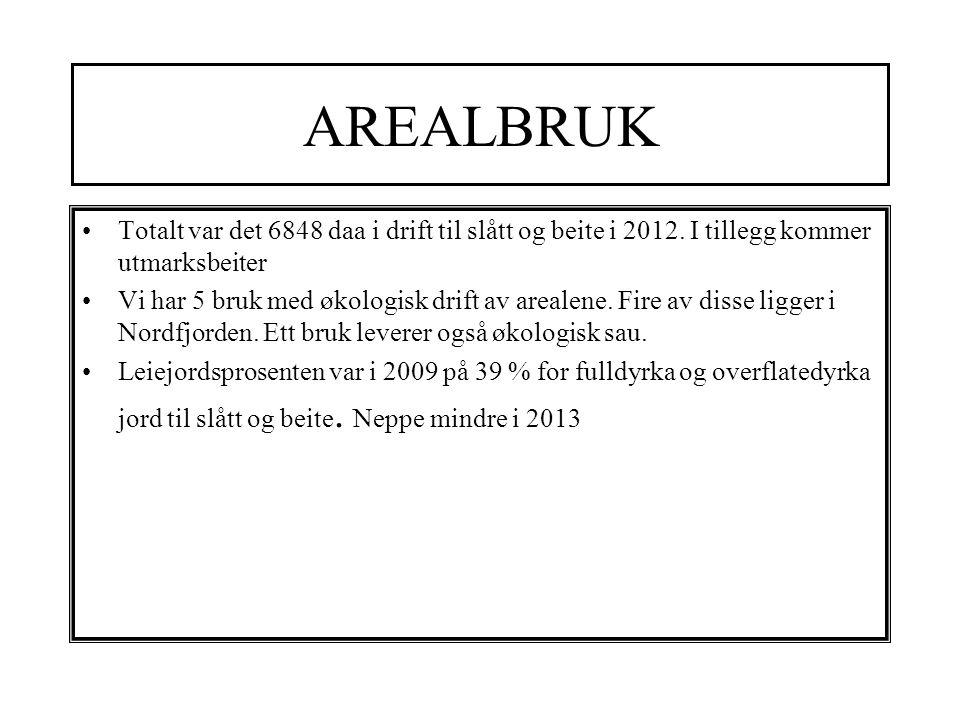 AREALBRUK Totalt var det 6848 daa i drift til slått og beite i 2012.