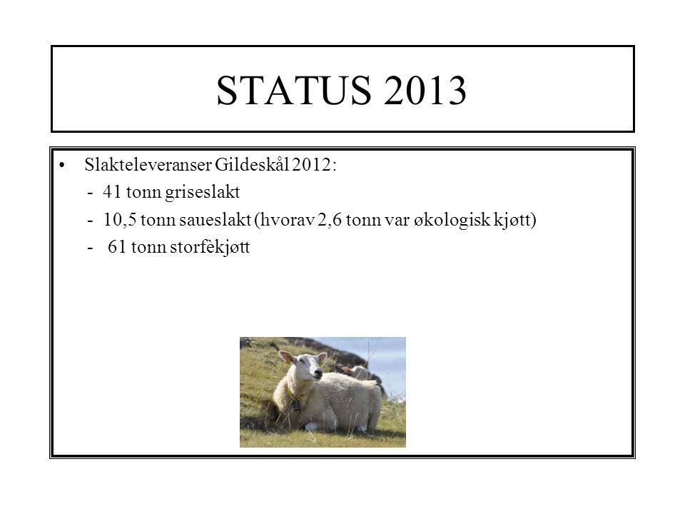 STATUS 2013 Slakteleveranser Gildeskål 2012: - 41 tonn griseslakt - 10,5 tonn saueslakt (hvorav 2,6 tonn var økologisk kjøtt) - 61 tonn storfèkjøtt
