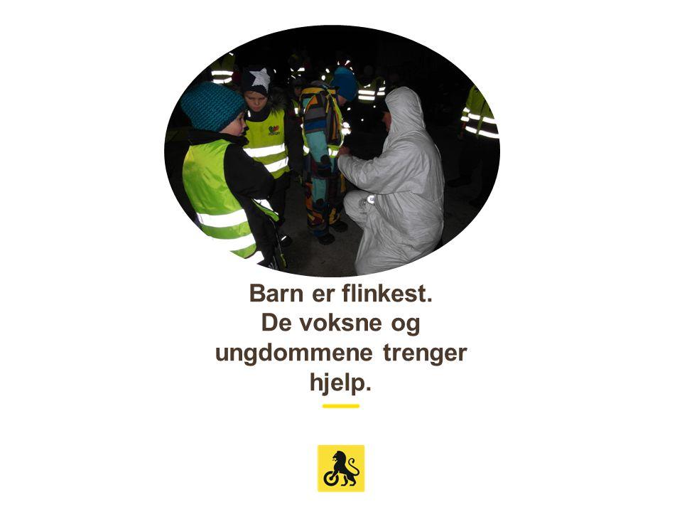 Huskeliste: Refleksen bør henge i knehøyde for å motta mest mulig lys fra billyktene.