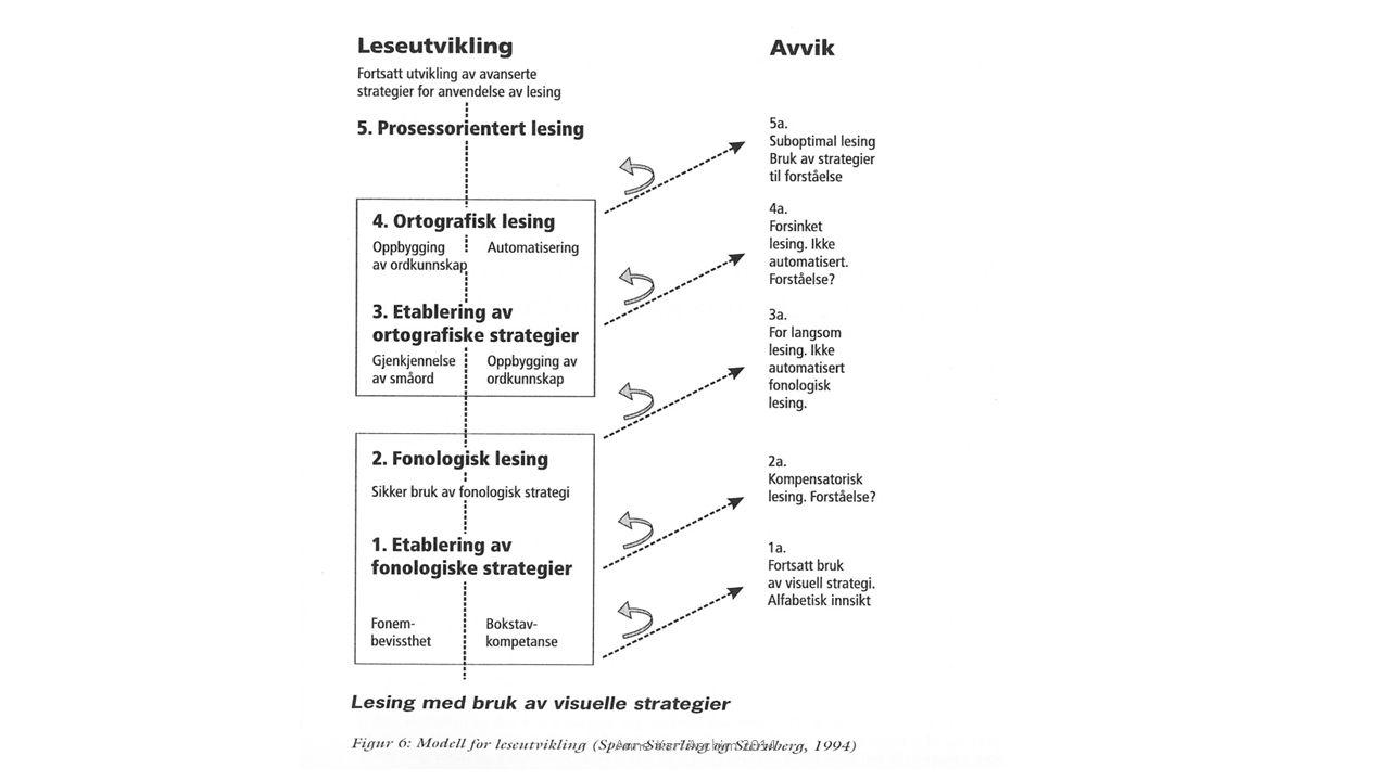 Lesekurs etter Helhetsmetoden - prinsipper: Helhet Detaljer Helhet Anne Kari Aschim 2014