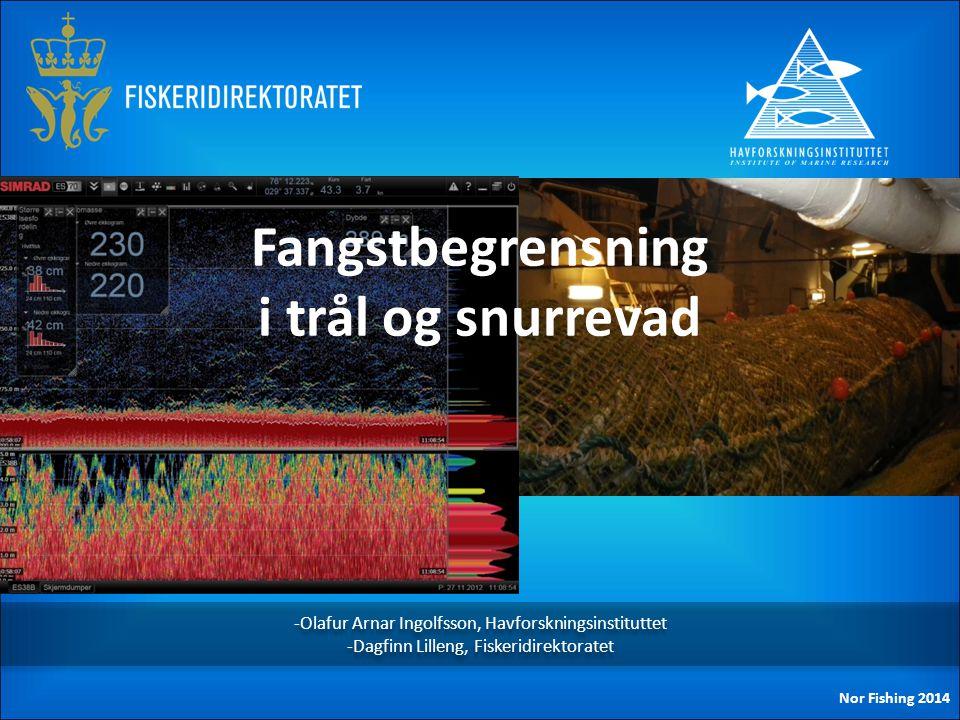 -Olafur Arnar Ingolfsson, Havforskningsinstituttet -Dagfinn Lilleng, Fiskeridirektoratet -Olafur Arnar Ingolfsson, Havforskningsinstituttet -Dagfinn L