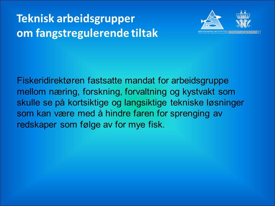 Teknisk arbeidsgrupper om fangstregulerende tiltak Fiskeridirektøren fastsatte mandat for arbeidsgruppe mellom næring, forskning, forvaltning og kystv