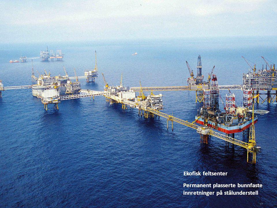 PTIL/PSA Ekofisk feltsenter Permanent plasserte bunnfaste innretninger på stålunderstell 17