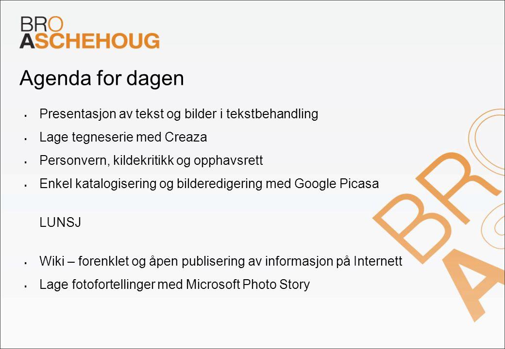 Google Picasa – importere og ordne bilder 1.Importer bilder med Picasa – Alt.