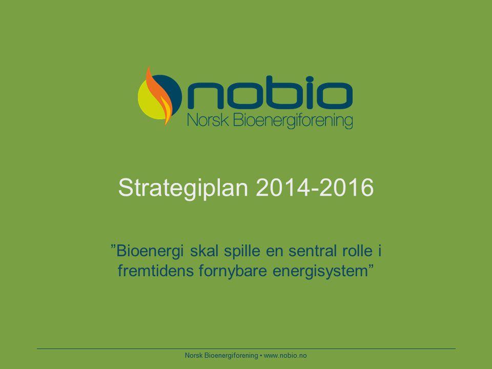 Hovedmål  Økt lønnsomhet for produksjon og bruk av bioenergi  Bioenergi skal være en foretrukken investering for energiselskaper, husholdninger, industri og tjenesteytende næringer  Forutsigbare og langsiktige rammebetingelser Norsk Bioenergiforening www.nobio.no