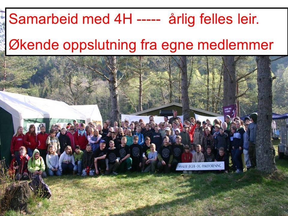 Samarbeid med 4H ----- årlig felles leir. Økende oppslutning fra egne medlemmer