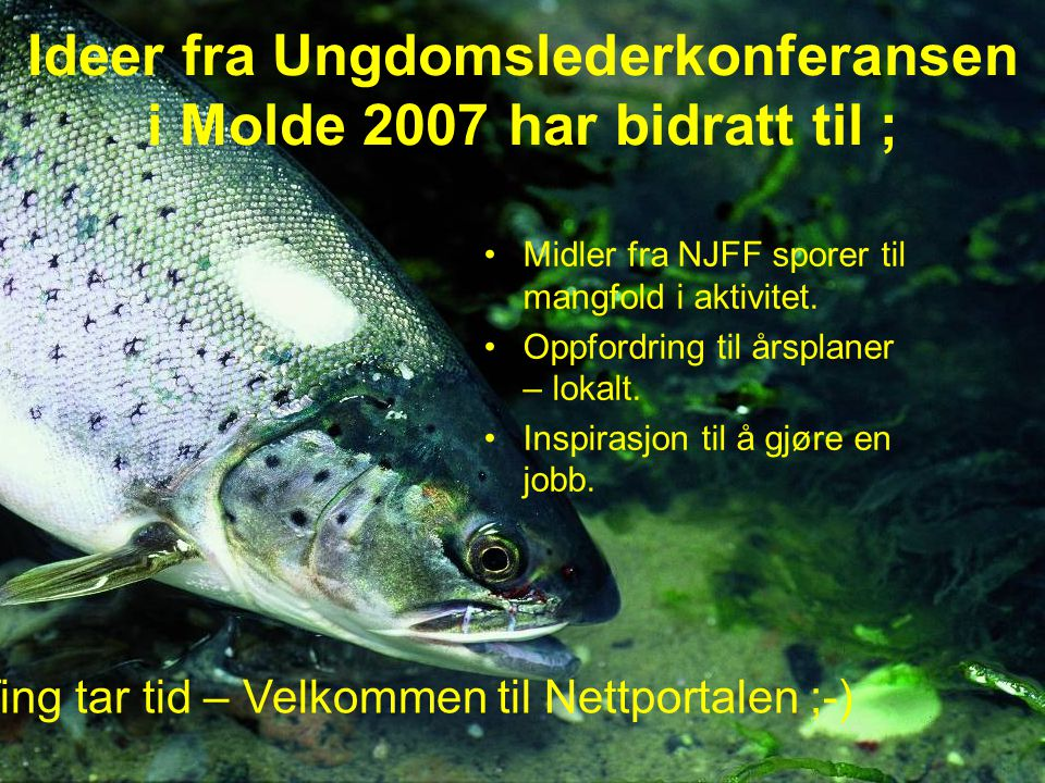 Ideer fra Ungdomslederkonferansen i Molde 2007 har bidratt til ; Midler fra NJFF sporer til mangfold i aktivitet. Oppfordring til årsplaner – lokalt.