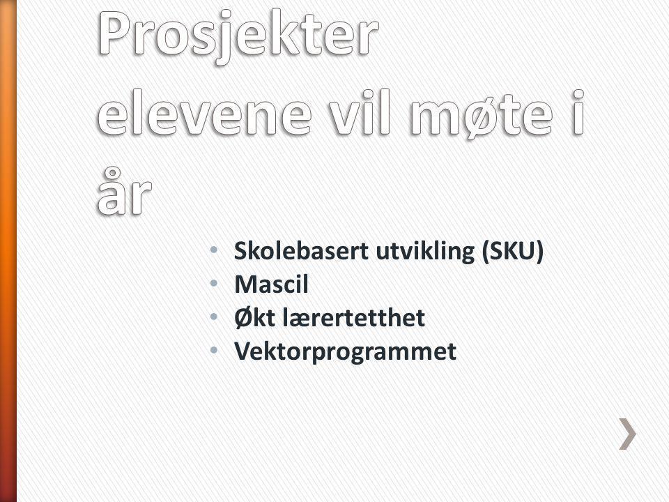 Skolebasert utvikling (SKU) Mascil Økt lærertetthet Vektorprogrammet