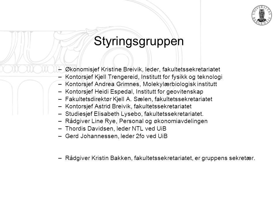 Styringsgruppen –Økonomisjef Kristine Breivik, leder, fakultetssekretariatet –Kontorsjef Kjell Trengereid, Institutt for fysikk og teknologi –Kontorsj