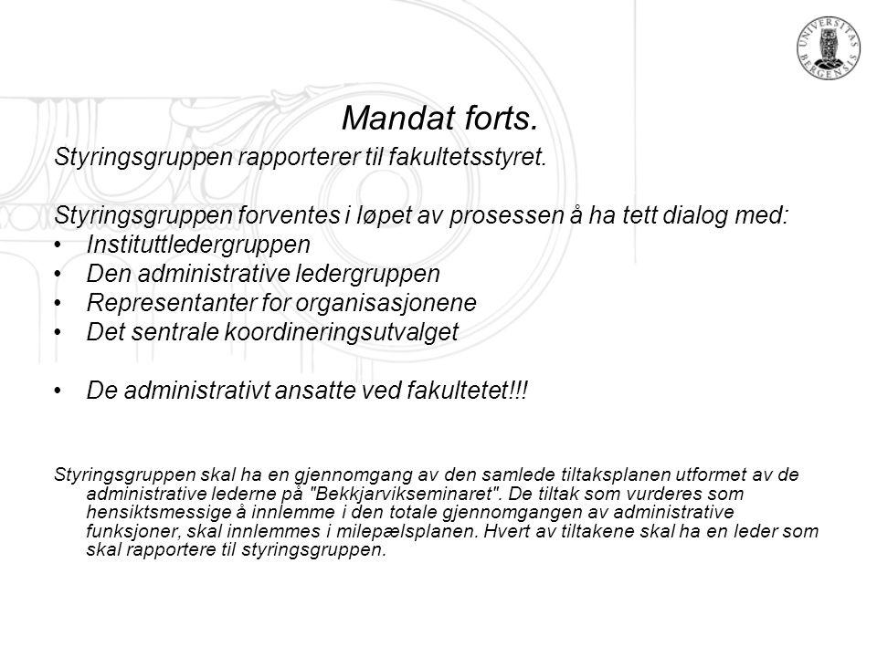 Mandat forts. Styringsgruppen rapporterer til fakultetsstyret.