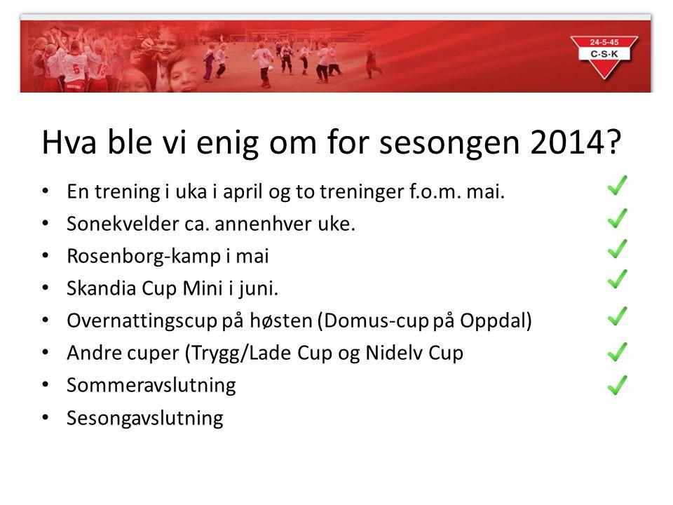Hva ble vi enig om for sesongen 2014? En trening i uka i april og to treninger f.o.m. mai. Sonekvelder ca. annenhver uke. Rosenborg-kamp i mai Skandia