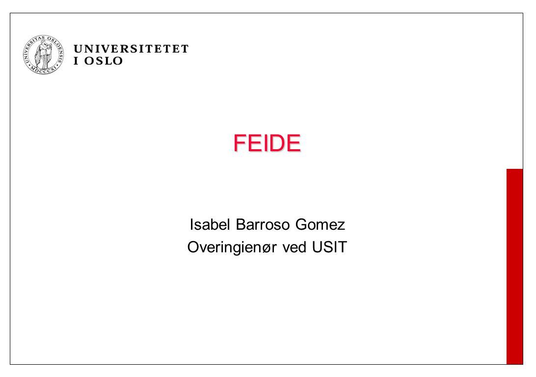 FEIDE Isabel Barroso Gomez Overingienør ved USIT
