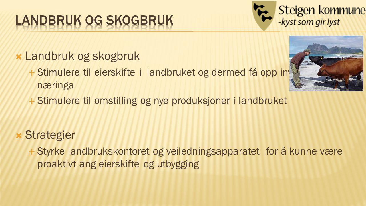  Reiseliv  Reiselivsnæring  Strategier  Bygge infrastruktur som havner, veier, avløp o.l.