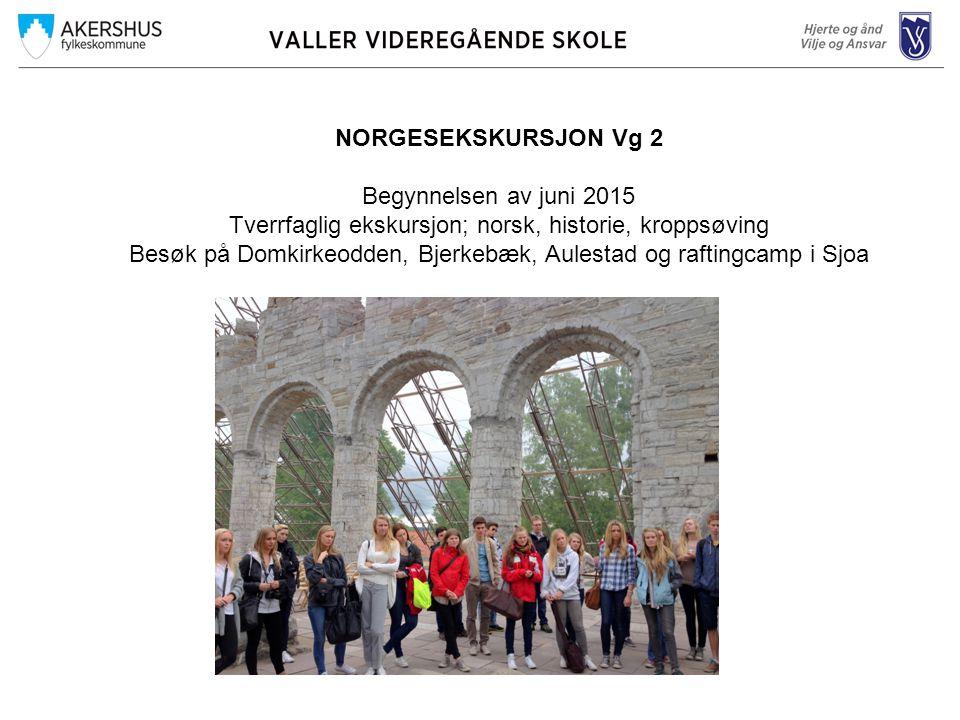 NORGESEKSKURSJON Vg 2 Begynnelsen av juni 2015 Tverrfaglig ekskursjon; norsk, historie, kroppsøving Besøk på Domkirkeodden, Bjerkebæk, Aulestad og raftingcamp i Sjoa