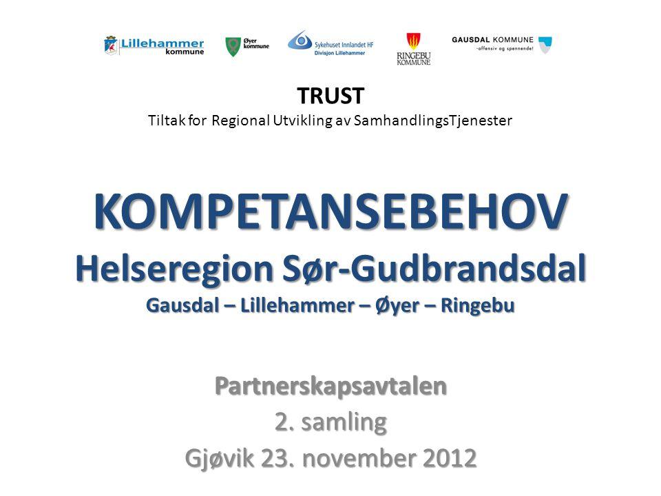 KOMPETANSEBEHOV Helseregion Sør-Gudbrandsdal Gausdal – Lillehammer – Øyer – Ringebu Partnerskapsavtalen 2.