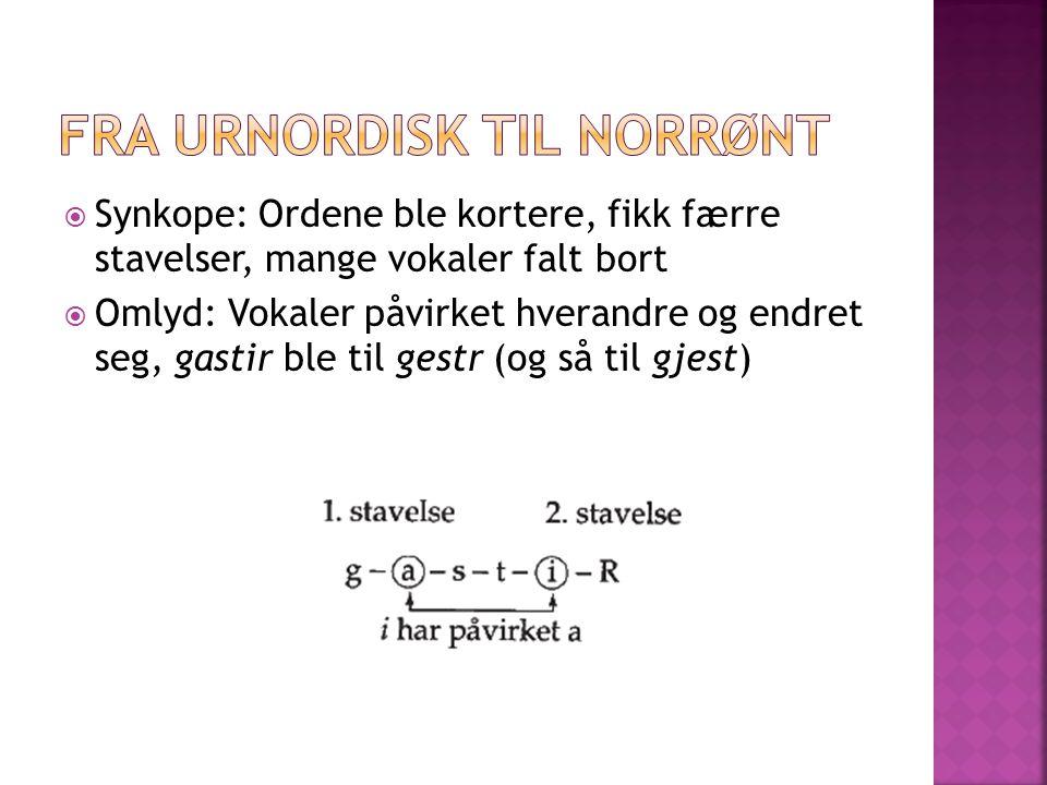  Synkope: Ordene ble kortere, fikk færre stavelser, mange vokaler falt bort  Omlyd: Vokaler påvirket hverandre og endret seg, gastir ble til gestr (