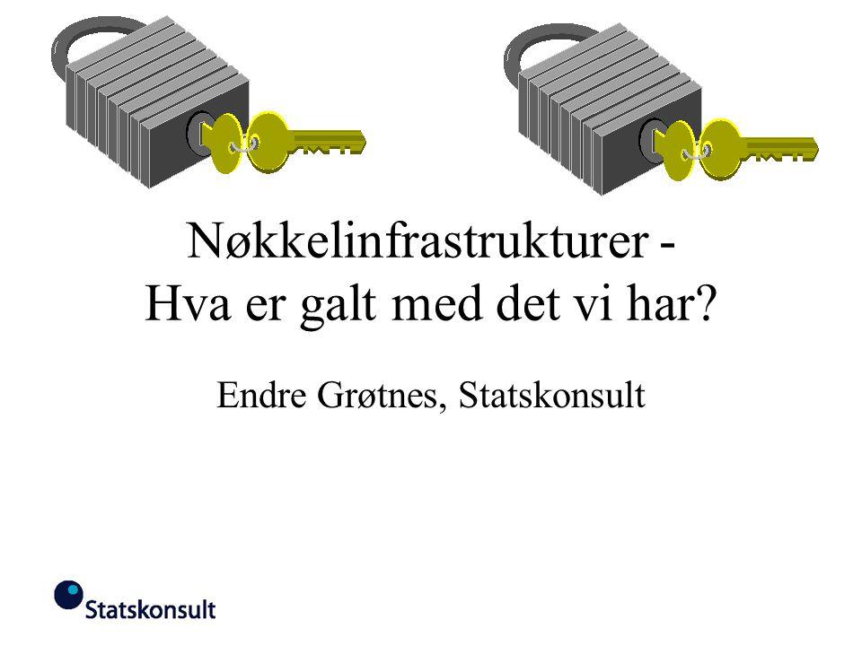 Nøkkelinfrastrukturer - Hva er galt med det vi har Endre Grøtnes, Statskonsult