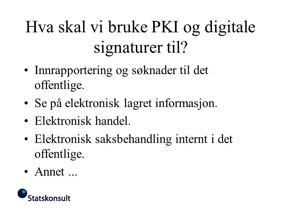 Hva skal vi bruke PKI og digitale signaturer til? Innrapportering og søknader til det offentlige. Se på elektronisk lagret informasjon. Elektronisk ha
