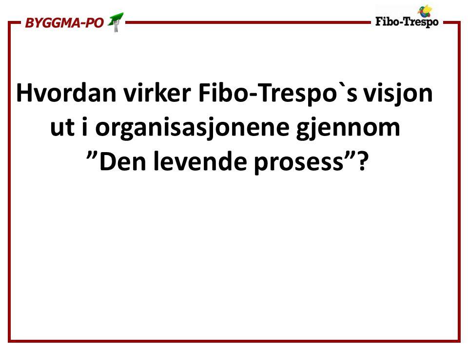"""Hvordan virker Fibo-Trespo`s visjon ut i organisasjonene gjennom """"Den levende prosess""""?"""