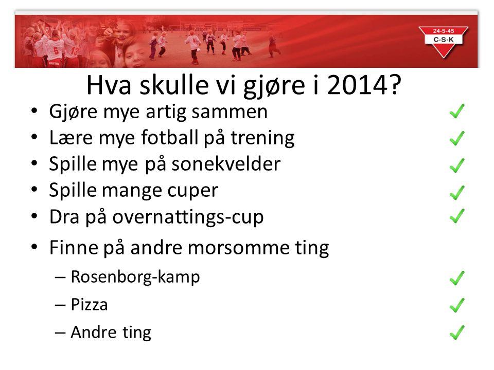 Hva skulle vi gjøre i 2014.