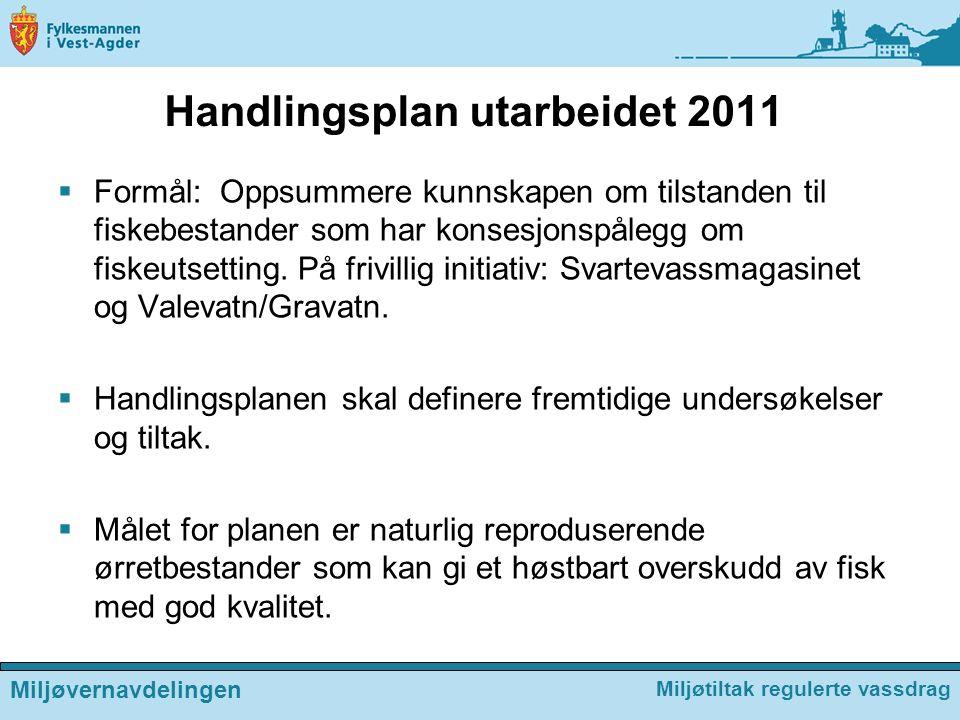 Handlingsplan utarbeidet 2011  Formål: Oppsummere kunnskapen om tilstanden til fiskebestander som har konsesjonspålegg om fiskeutsetting. På frivilli