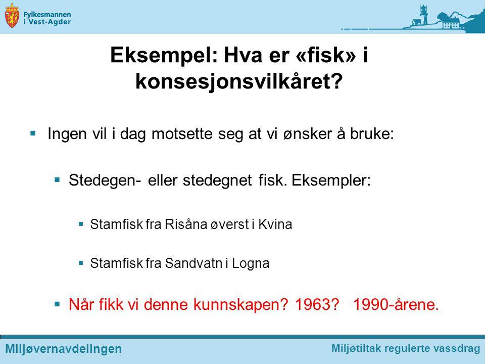 Eksempel: Hva er «fisk» i konsesjonsvilkåret?  Ingen vil i dag motsette seg at vi ønsker å bruke:  Stedegen- eller stedegnet fisk. Eksempler:  Stam