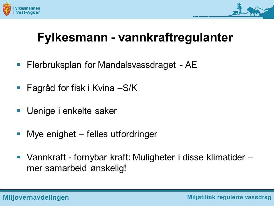 Fylkesmann - vannkraftregulanter  Flerbruksplan for Mandalsvassdraget - AE  Fagråd for fisk i Kvina –S/K  Uenige i enkelte saker  Mye enighet – fe