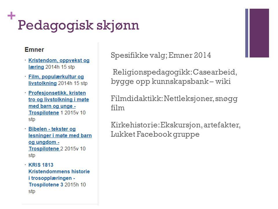 + Pedagogisk skjønn Spesifikke valg; Emner 2014 Religionspedagogikk: Casearbeid, bygge opp kunnskapsbank – wiki Filmdidaktikk: Nettleksjoner, snøgg fi