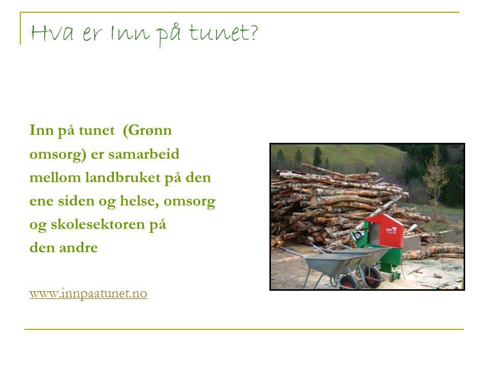 Inn på tunet - et lokal og nasjonal satsingsområde Utviklingsprosjekt de siste 9 årene i Sør-Trøndelag (ca 70 samarbeidstilbud) Et nasjonalt satsingsområde i Norge (800 gårder) Egen nasjonal møtearena for Inn på tunet En egen nasjonal handlingsplan for Inn på tunet Inn på Tunet Løftet som lanseres 9.