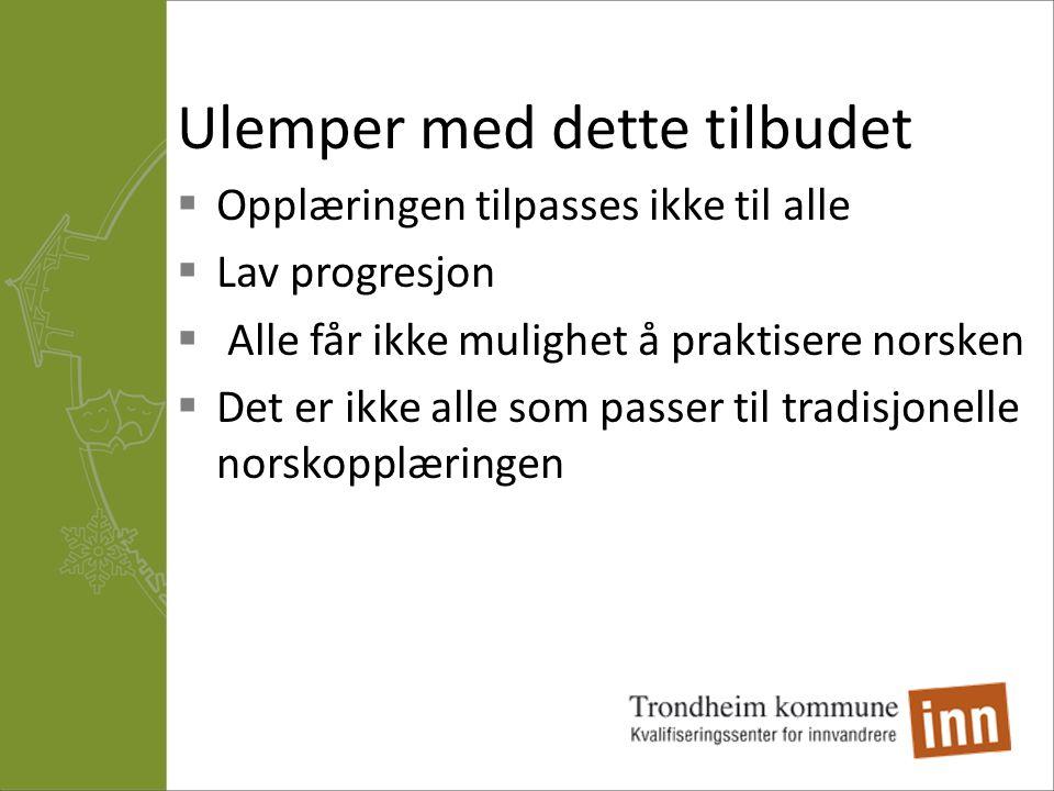 Ulemper med dette tilbudet  Opplæringen tilpasses ikke til alle  Lav progresjon  Alle får ikke mulighet å praktisere norsken  Det er ikke alle som