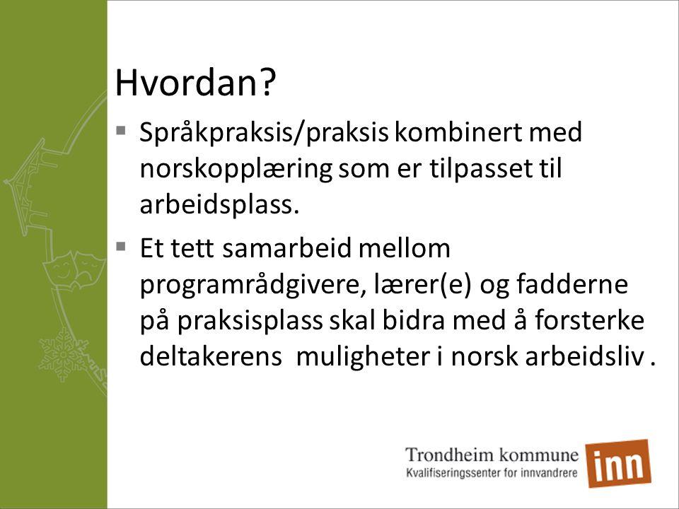Hvordan?  Språkpraksis/praksis kombinert med norskopplæring som er tilpasset til arbeidsplass.  Et tett samarbeid mellom programrådgivere, lærer(e)