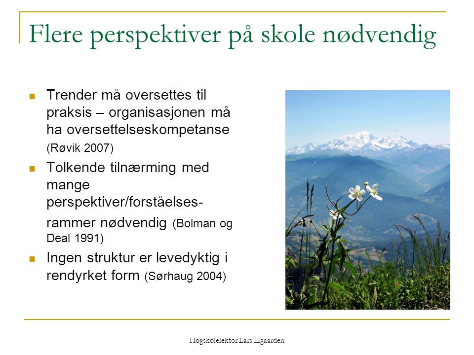 Høgskolelektor Lars Ligaarden Flere perspektiver på skole nødvendig Trender må oversettes til praksis – organisasjonen må ha oversettelseskompetanse (