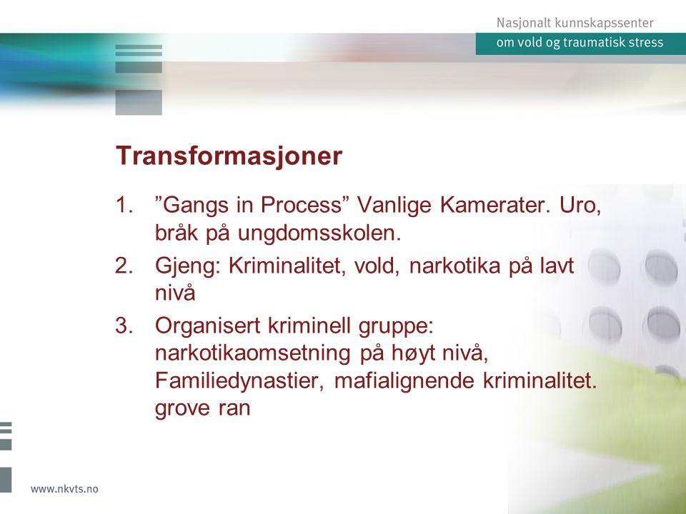 Transformasjoner 1. Gangs in Process Vanlige Kamerater.