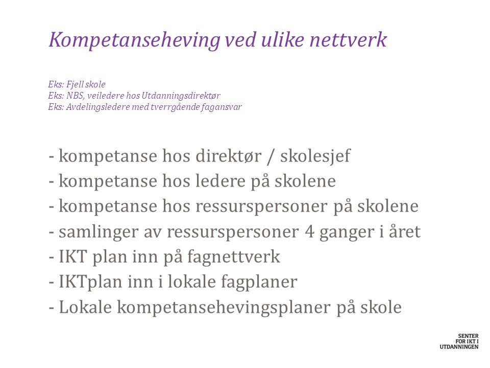 Kompetanseheving ved ulike nettverk Eks: Fjell skole Eks: NBS, veiledere hos Utdanningsdirektør Eks: Avdelingsledere med tverrgående fagansvar - komp