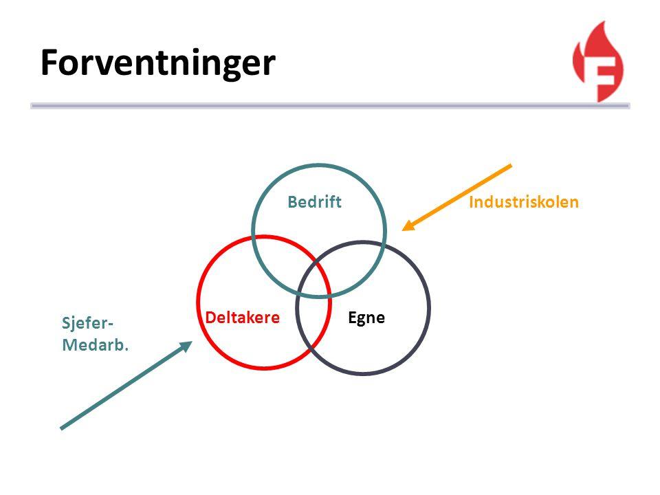 Forventninger Deltakere Egne Sjefer- Medarb. BedriftIndustriskolen