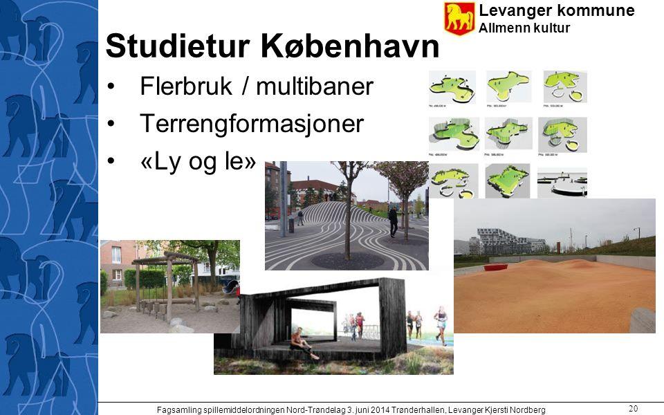 Levanger kommune Allmenn kultur Studietur København Flerbruk / multibaner Terrengformasjoner «Ly og le» Fagsamling spillemiddelordningen Nord-Trøndela