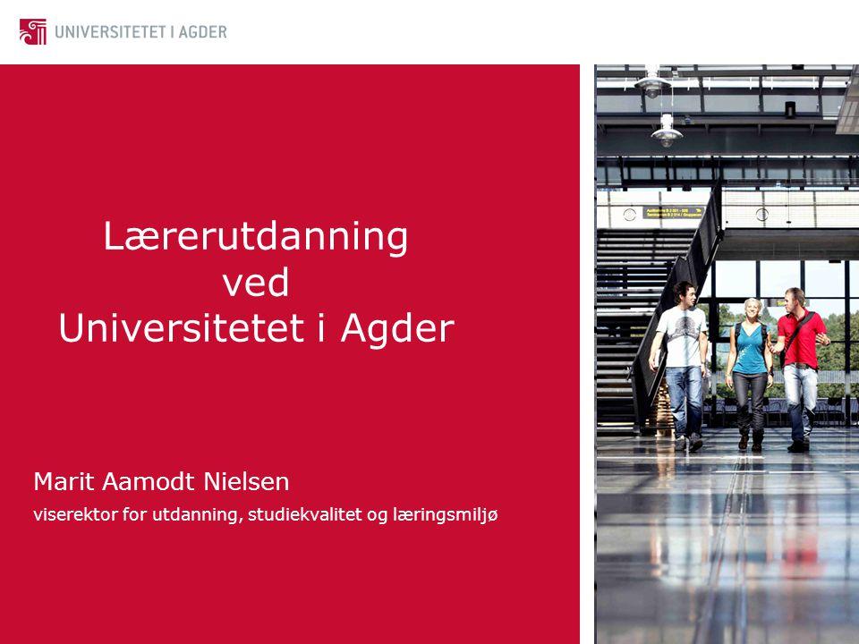 Lærerutdanning ved Universitetet i Agder Marit Aamodt Nielsen viserektor for utdanning, studiekvalitet og læringsmiljø