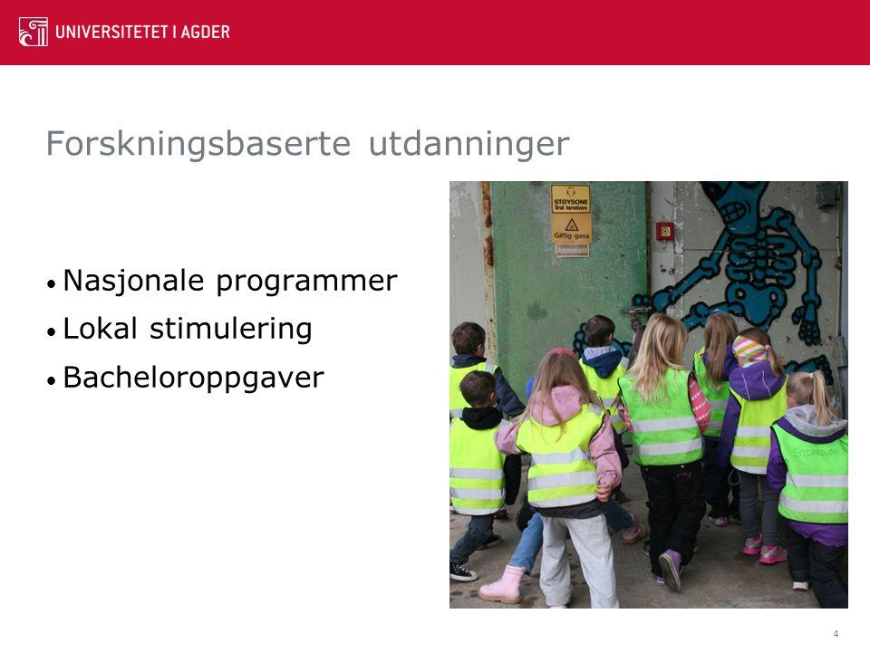 Forskningsbaserte utdanninger Nasjonale programmer Lokal stimulering Bacheloroppgaver 4